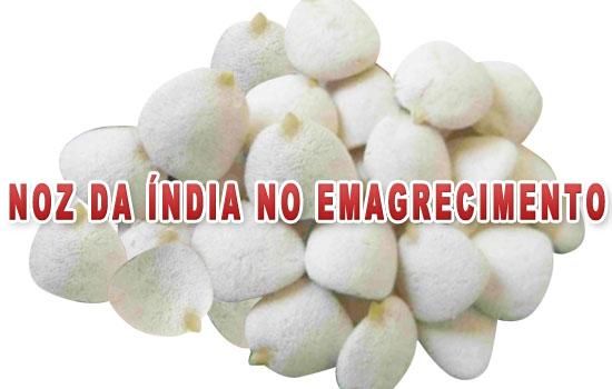 Noz da Índia: emagrece mesmo? Conheça! (Foto: Divulgação)