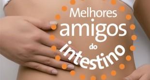 Dieta dos Intestinos: como funciona? (Foto: Divulgação)