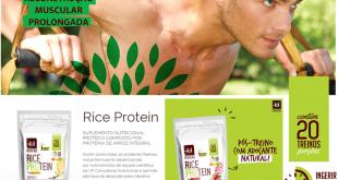Rice protein: tudo sobre esse suplemento (Foto: Divulgação)