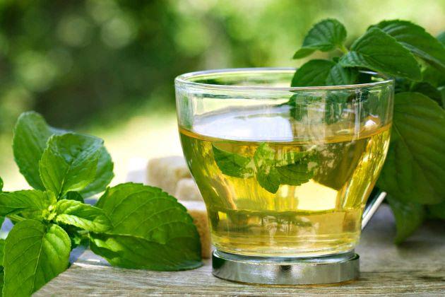 Chá de boldo: ajuda em que? (Foto: Divulgação)