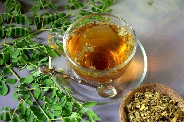 Chá de Moringa