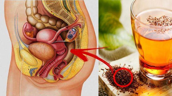 Chás para descer a menstruação atrasada